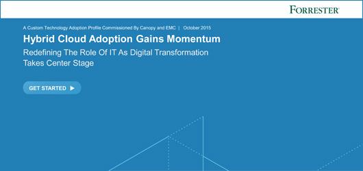 Hybrid Cloud Adaption Gains Momentum