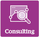 ppm-consulting