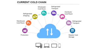 atos-ascent-current-gold-chain