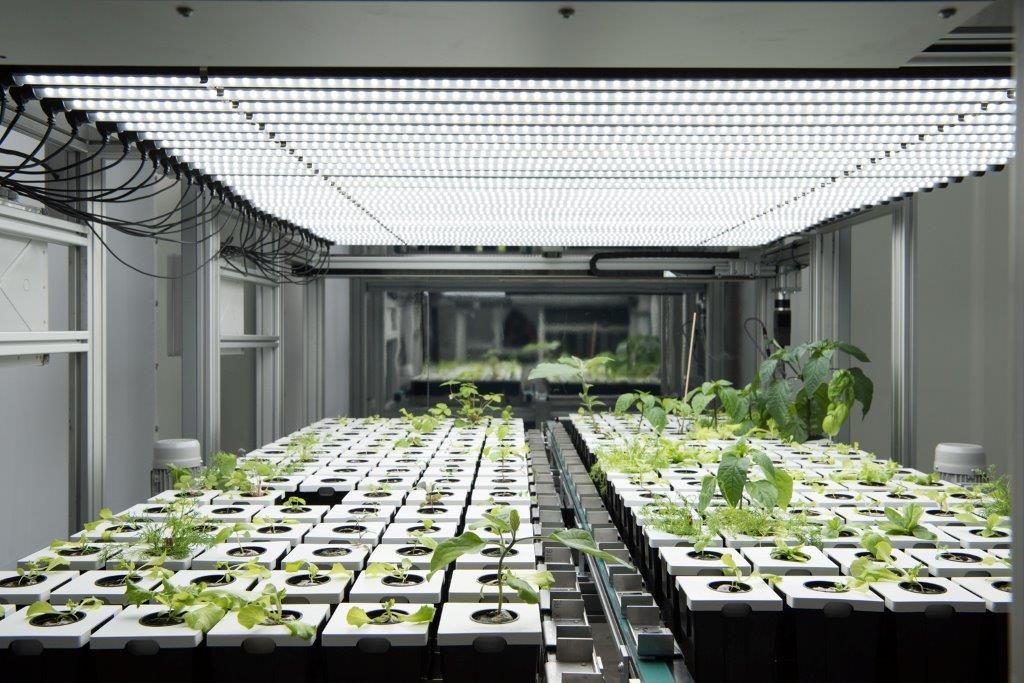 Atos Launches World's First Vertical Digital Urban Farming